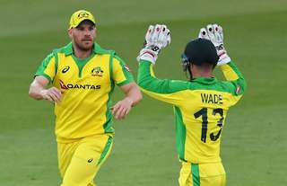 Finch and Wade celebrating a wicket